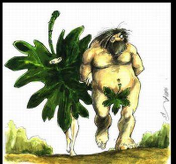 Afganistanska adaptacija Adama i Eve